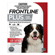 Buy Frontline Plus for Dogs & Cats