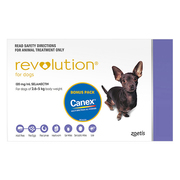 Revolution for Dogs ( 2 to 5Kg ) - Protect Against Worms & Flea