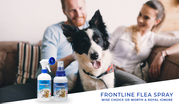 Frontline Flea Spray: Wise Choice or Worth a Royal Ignore